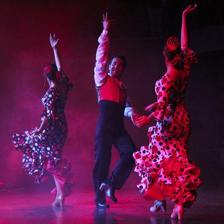 Flamenco & Classical Spanish Show