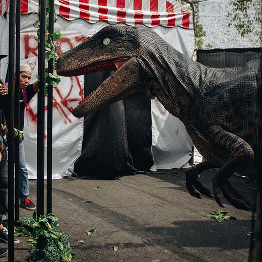 Dinosaur Wildpark Live Show