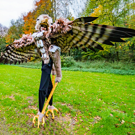 Frantastica - Big Birds