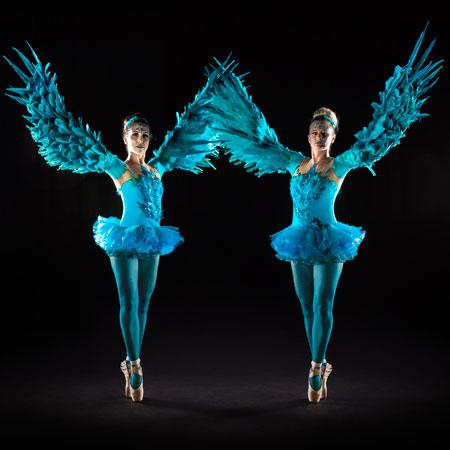 Tumbellina: Winged Ballerinas