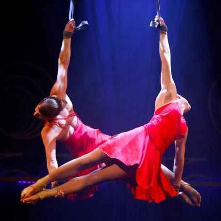 Duo Elja - Aerial Straps
