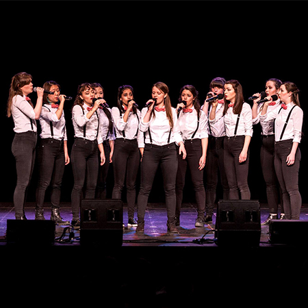 The Rolling Tones - A Cappella Group