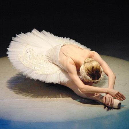 Vienna Festival Ballet - Swan Lake