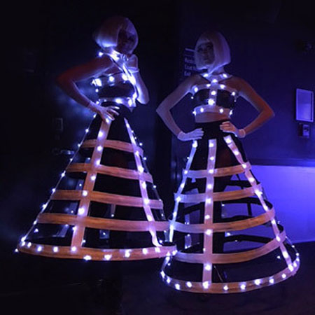 The Painted Ladies - LED Dress