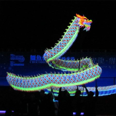 Cheng Jing Hui & Lion Dance Association - Luminous Dragon Dance