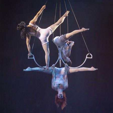 Aerial Trio Lustrio