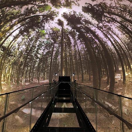 Secret Garden - Immersive Domes