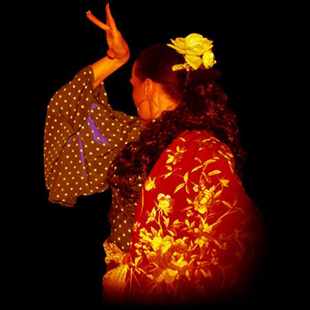 Flamenco Flores