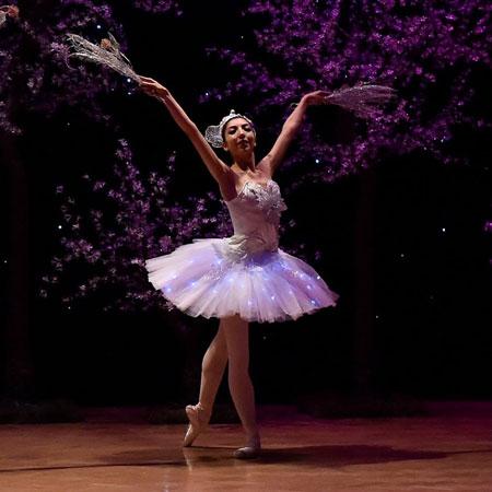 Sophie Adams Ballet Company - Snowflake Ballerinas