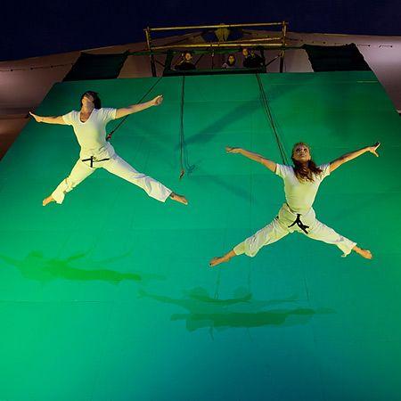 Art of Entertainment - Vertical Ballet
