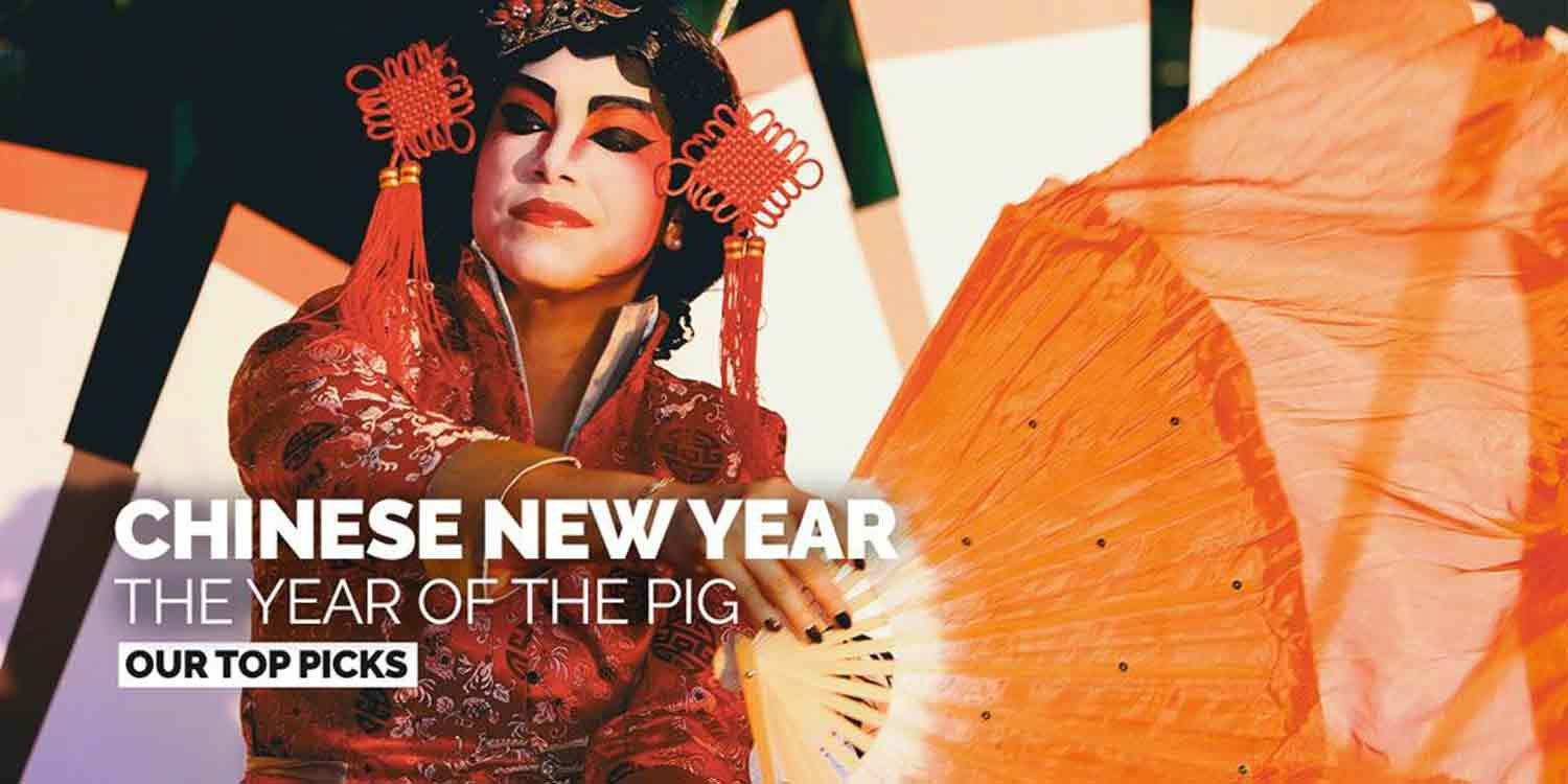 Chinese New Year Entertainment: The Year of the Pig