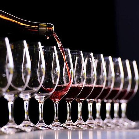 Terra Hispana Sl -Wine tasting