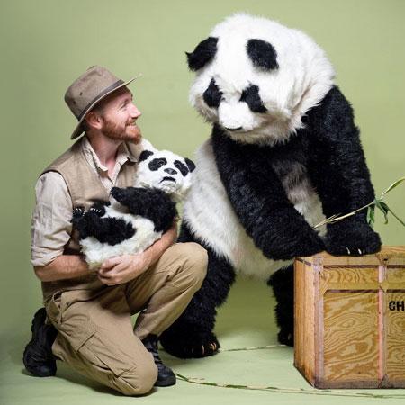 LoS kAoS - Panda
