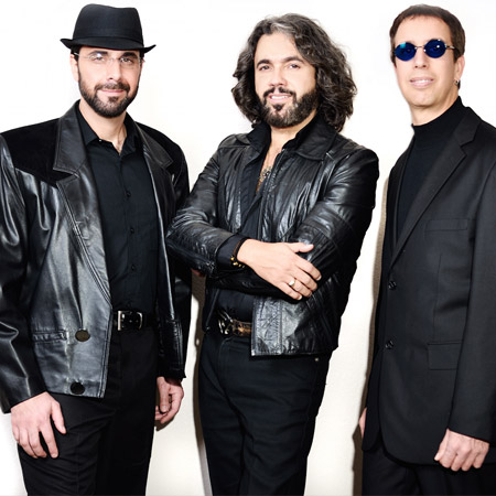 In Its Entirety - The Bee Gees