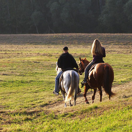 Tour in Rome - Rome Horse Riding Tours