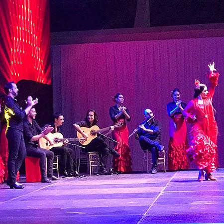 Naama Vivancos - Flamenco Show