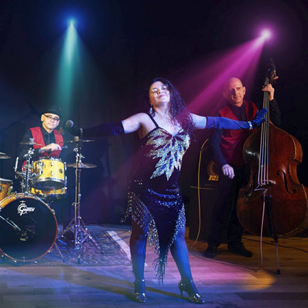 Tropicalia - Latin Jazz Trio / Quartet