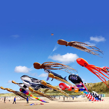 Mascotte Kite Team - Sea Theme