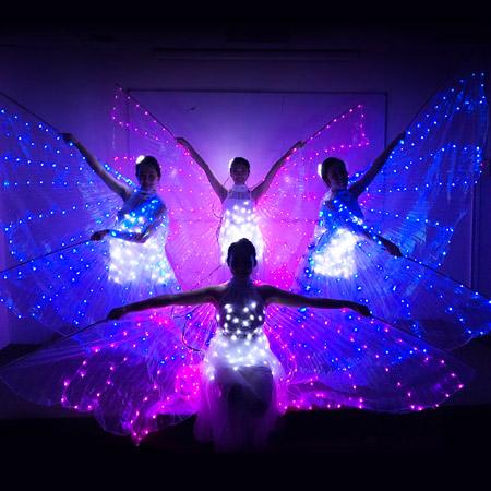 LED Butterfly Dance