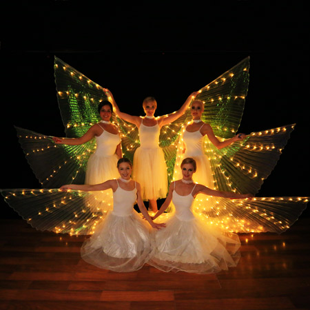 Luxe Productions - LED Wings Show