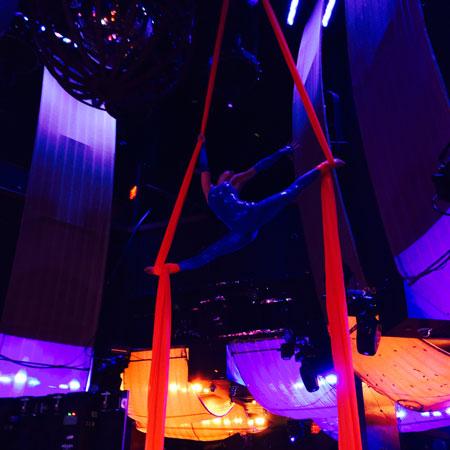 Hayden Productions - Cirque-Style Silk Act