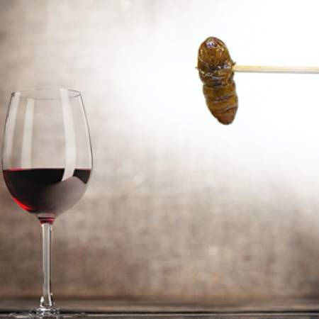 Sud Ouest Passion - Unusual Tasting - Wines & Insects