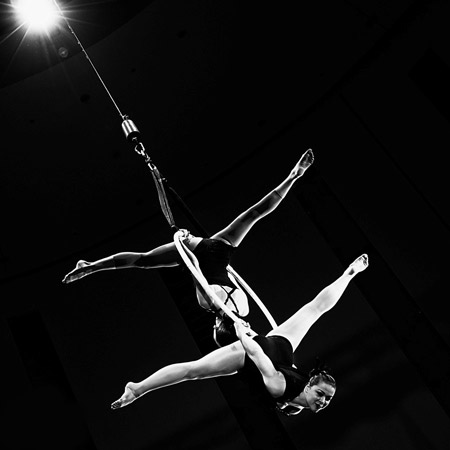 Vertigo - Aerial Ring Duo