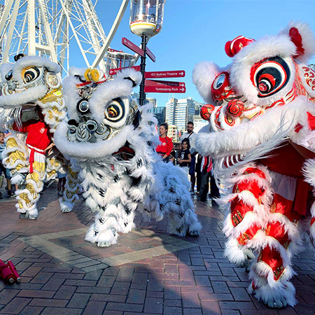 CYL Lion and Dragon Dance Australia
