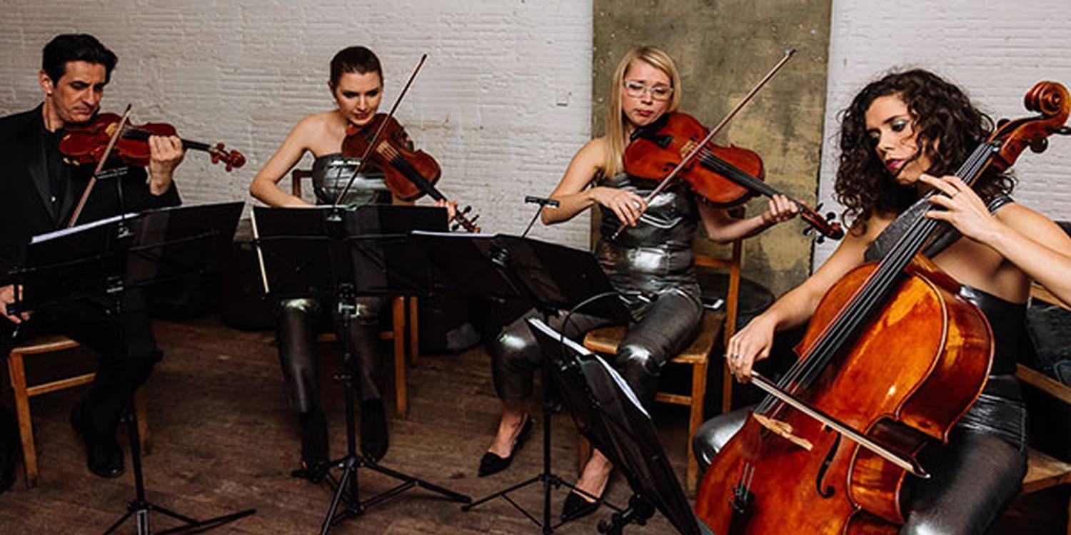 String Ensemble Dazzle At Corporate Christmas Event