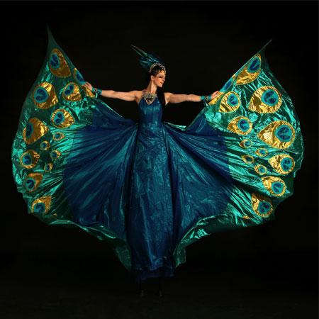 The Dream Performance - Peacocks