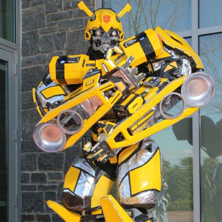 Bumblebee & Overkill - Transformer Robots