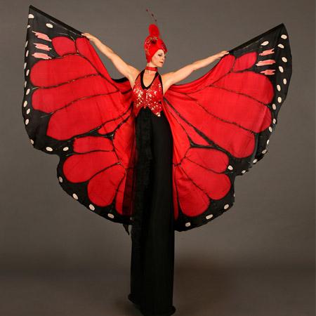 The Dream Performance - Butterflies