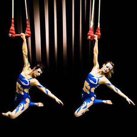 A2D2 - Aerial Dance Cirque Cirque