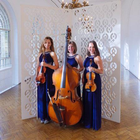 Blue Topaz Acoustic Strings