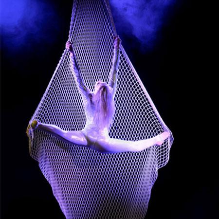 Svetlana Wottschel - Aerial Net