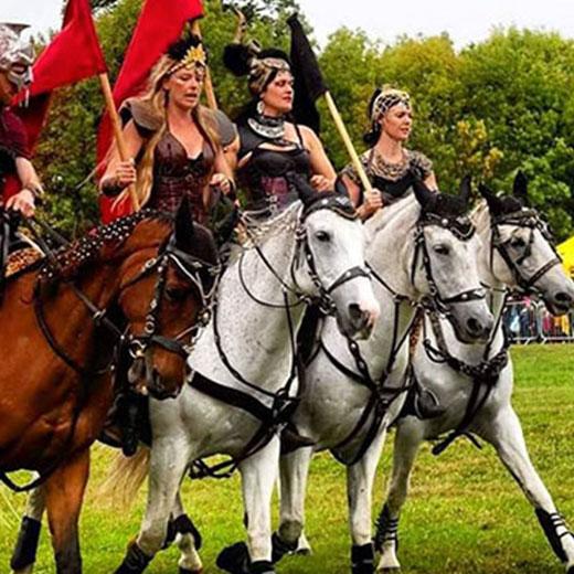 Equestrienne Stunt Shows - Jousting Display