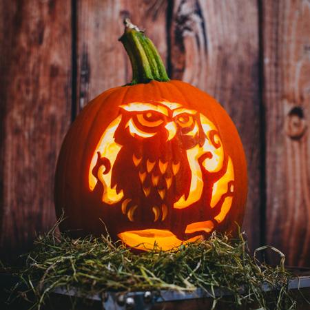 Sisi Pumpkin Carver