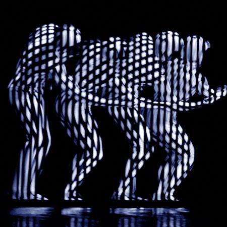 Evolution Dance Theatre - Zebra
