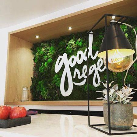 Vegetal Indoor