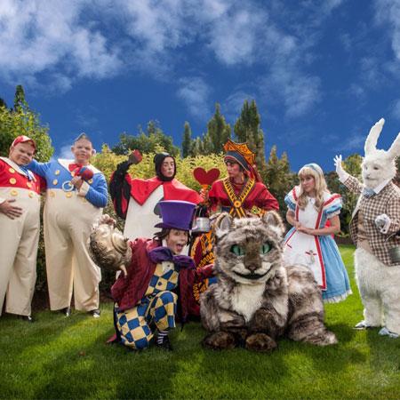 TEN31 - Alice In Wonderland Characters