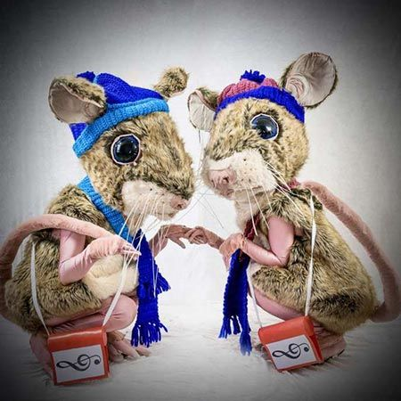 Cheeky Field Mice ( can be with or without hats and scarfs, depending on the time of year)