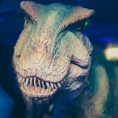 Candi Promotions - T-Rex Dinosaur