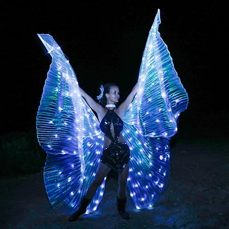Mirjam Meine - LED Shows