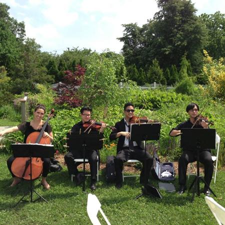 New York String Quartets