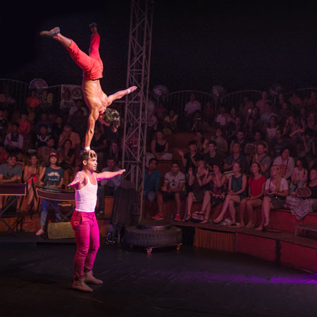 Phare, The Cambodian Circus - Flower Act
