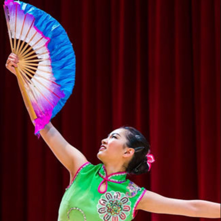 New York Chinese Cultural Center - Chinese Acrobat