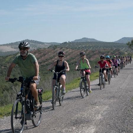 Bike Tours Malaga - Andalusia Bike Tours and Group Tours in Malaga and Andalusia
